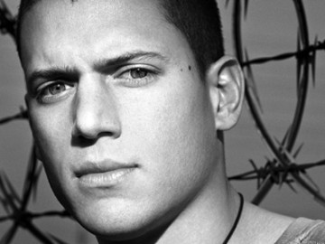 Wentworth Miller came out of the closet
