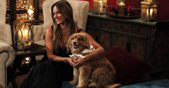Molly The Dog on The Bachelor